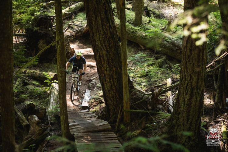 Dynamic trails are cherry picked for the BC Bike Race.