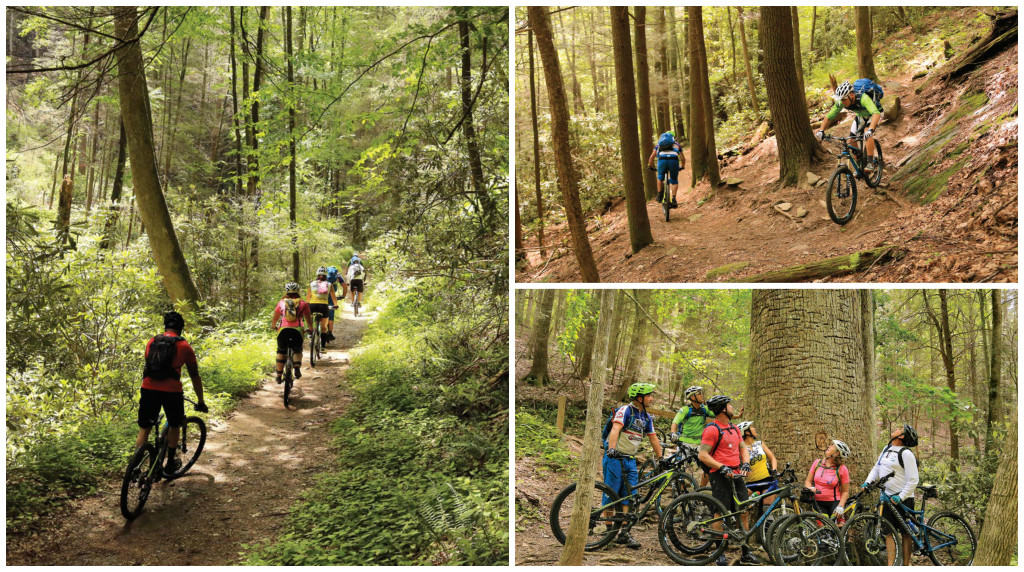 Bike Destinations Georgia On Our Minds Mountain Bike Action Magazine