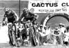 Cactus_1-750